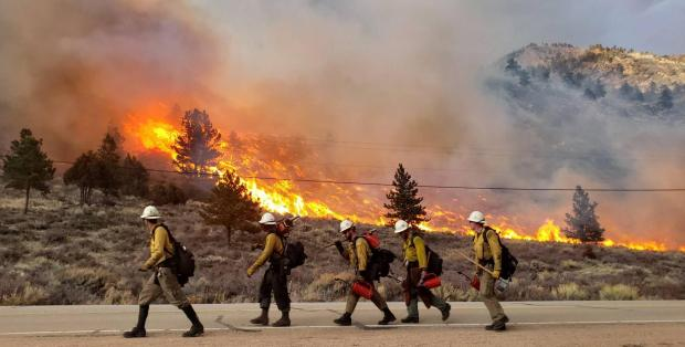Incident Photo for the Elkhorn-Pingree Hill Prescribed Burns Fire