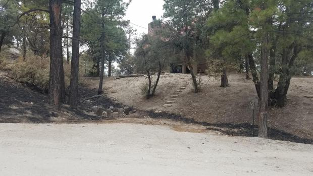 Incident Photo for the Bighorn Fire