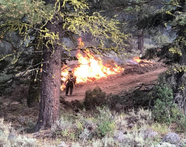Incident Photo for the W-5 Cold Springs Fire