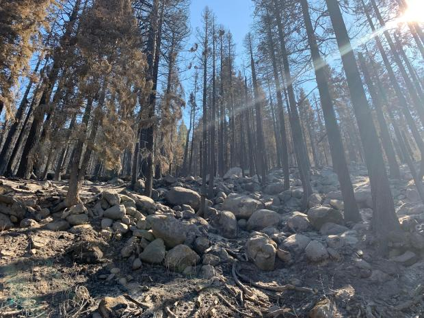 Incident Photo for the Spring Fire