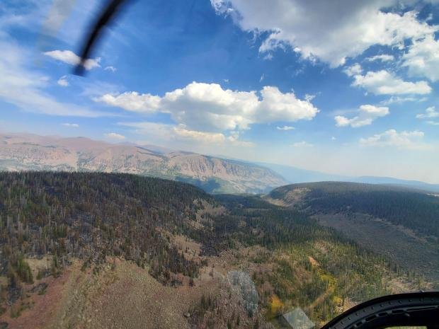 Incident Photo for the Center Creek Trail Fire