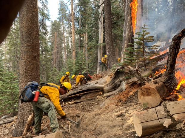 Incident Photo for the Bullfrog Fire