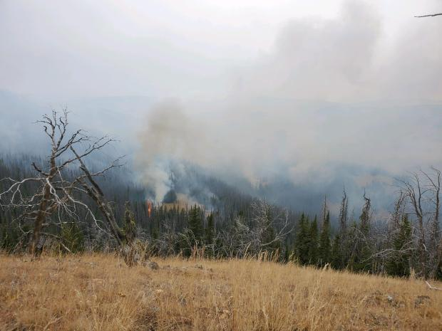 Incident Photo for the Lobo Mesa Fire