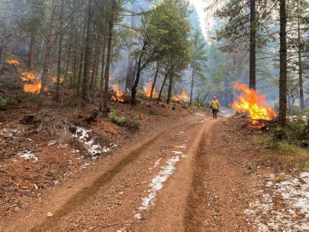 Incident Photo for the Shasta-Trinity RX Burning 2020/2021 Fire
