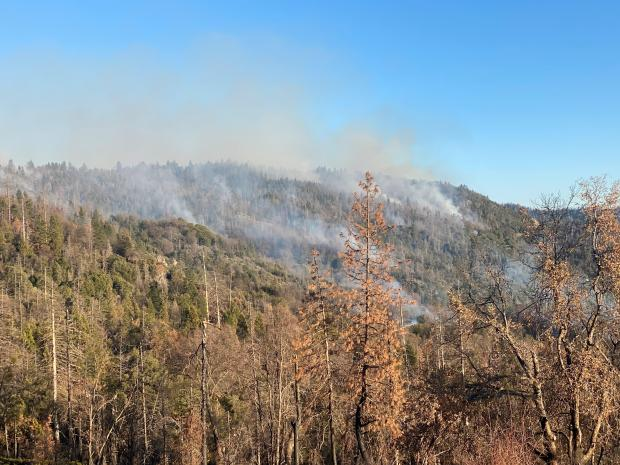 Incident Photo for the Payette NF 2Spring Prescribed Fire