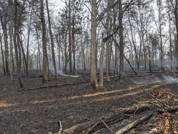 Incident Photo for the King Fire