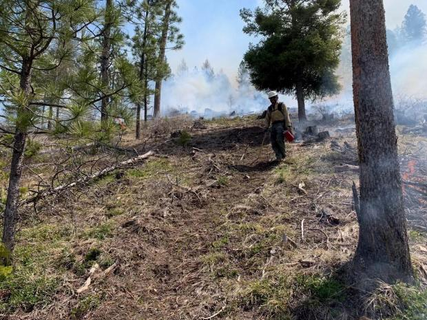 Incident Photo for the Spring Prescribed Projects 2021 Fire