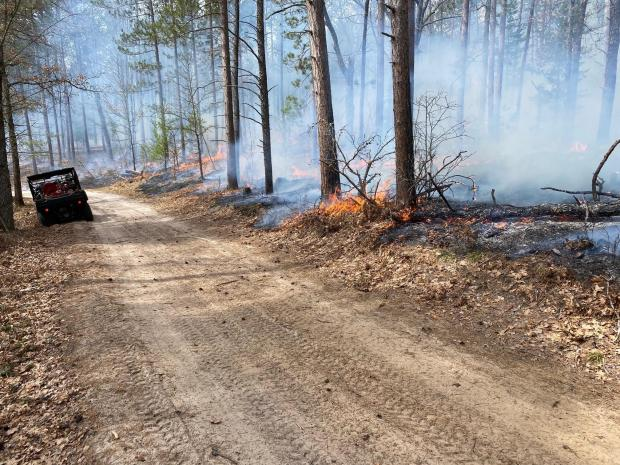 Incident Photo for the Huron-Manistee NFs Spring RX Burning Fire