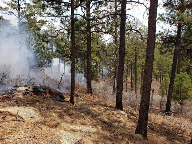 Incident Photo for the Cuervito Fire