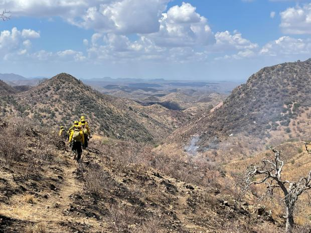 Incident Photo for the Mojave Fire