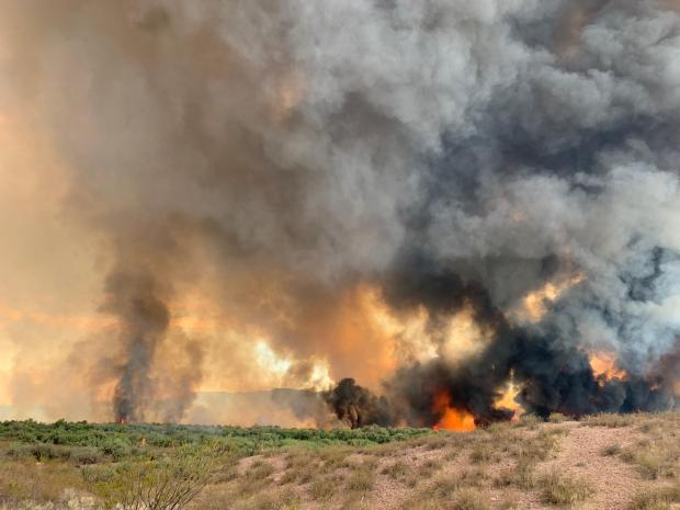 Incident Photo for the Dry Gulch Fire