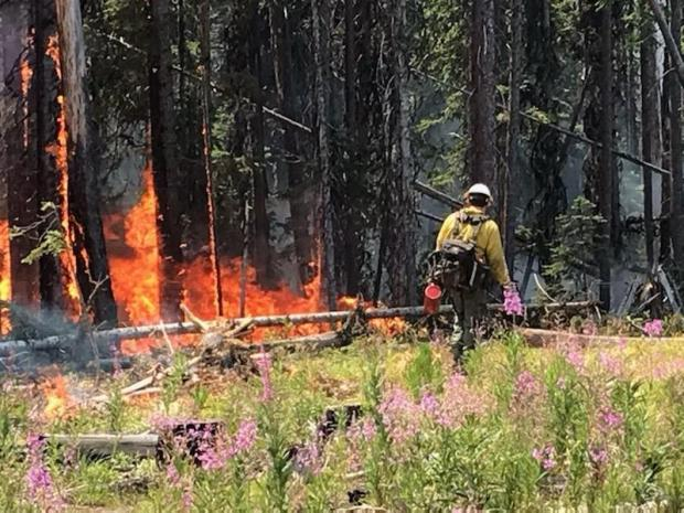 Incident Photo for the Dixie-Jumbos Fire