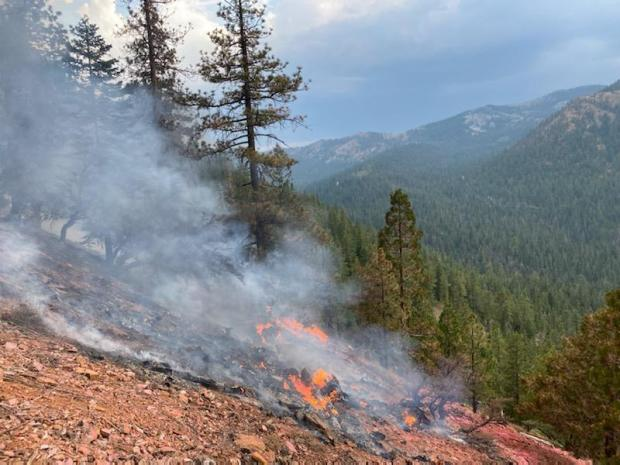 Incident Photo for the Shasta-Trinity July Lightning Fire