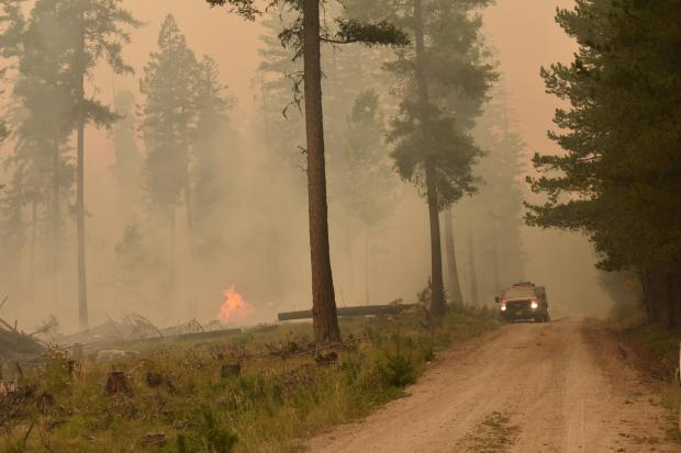 Incident Photo for the Chickadee Creek Fire