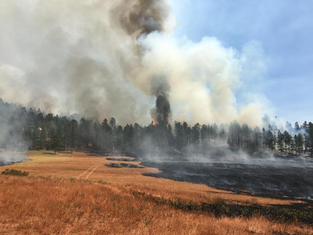 Incident Photo for the Richard Spring Fire